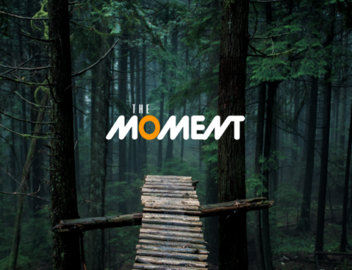 The Moment – Movie Night with SCC