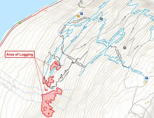 Logging on Rubberhead Starting Monday Apr 30
